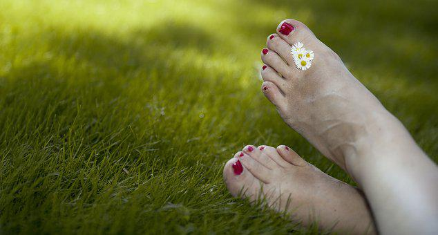 Relax, Summer, Holiday, Garden, Vrij, Freedom, Feet