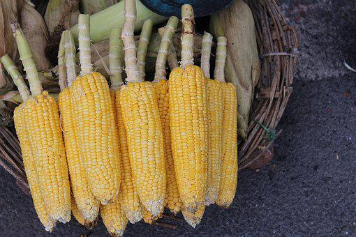 Corn, Street, Sell, Vegetable, Indian