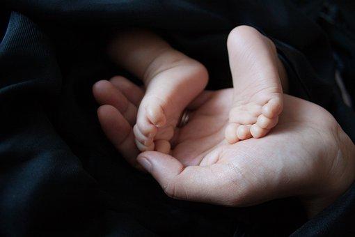 Baby, Cute, Feet, Hand, Open Hand, Parent, Newborn
