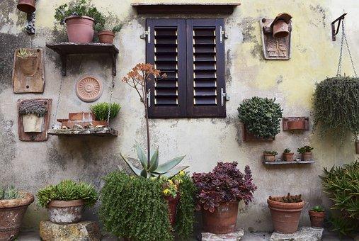 Nature, Wall, Windows, Garden, Plants, Flowerpot