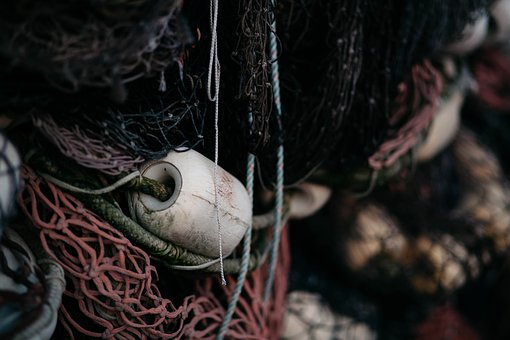 Rope, Net, Tissue Roll