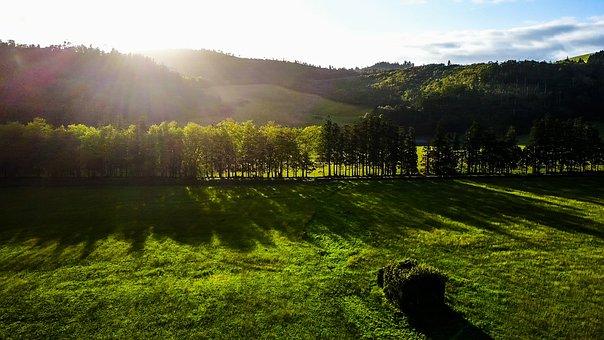 Azores, Sunrise, Meadow, Landscape, Nature, Fog, Grass