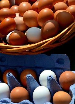 Egg, Hen's Egg, Egg Box, Close, Basket Cosy, Egg Carton