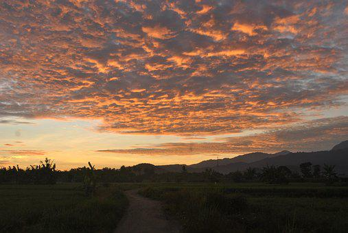 Sunrise, Ricefields, Sumbawa