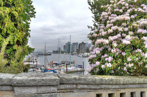 Vancouver, Marina, Flowers, Canada, Colombia-british