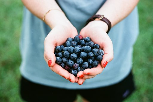 Blueberry, Fruit, Food, Hand, Palm, Garden