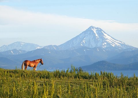 Volcano, Horse, Bay, Snow, Fog, Mountains, Sky, Water