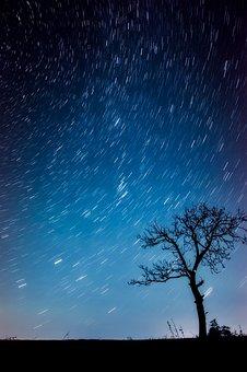 Tree, Landscape, Silhouettes, Stars, Night, Evening