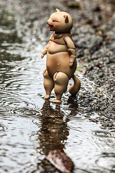 Toy, Fun, Water, Rain, Puddle, Reflection