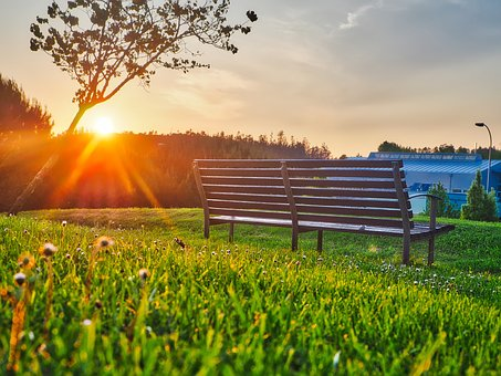 Green, Grass, Lawn, Outdoor, Nature, View, Bench