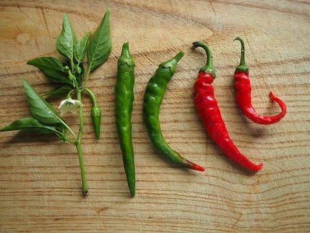 Chili, Paprika, Sharp, Spice, Pepperoni, Red