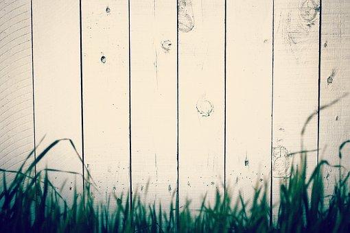 Wooden, Wall, Fence, Green, Grass