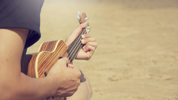 People, Guy, Guitar, Music, Musical, Instrument