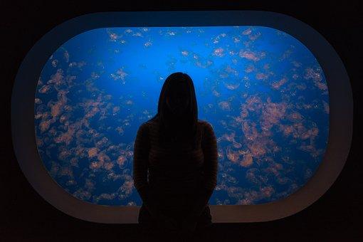 People, Alone, Silhouette, Dark, Aquarium, Blue, Water