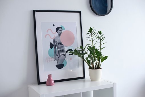 Photo, Picture, Frame, Shelf, Interior, Plant, Pot