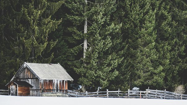 Cabin, House, Home, Barn, Fence, Woods, Forest