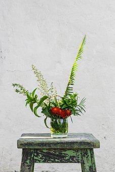 Chair, Wooden, Vase, Flower, Leaves, Green, Orange