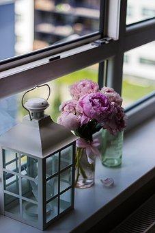 Colorful, Flower, Vase, Lamp, Bedroom, Window, Blur