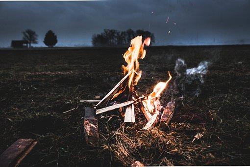 Wood, Bonfire, Campfire, Fire, Trees, Ash, Heat
