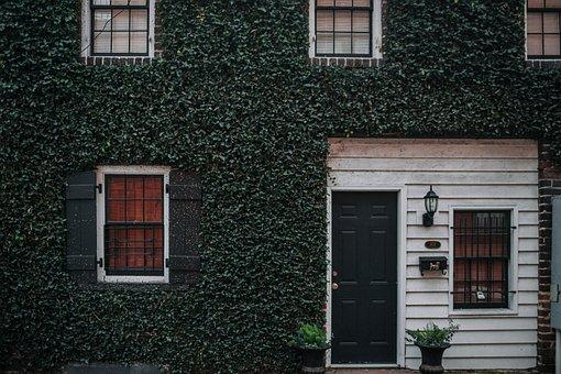 House, Grass, Plants, Vase, Window, Glass, Door