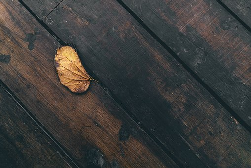 Leaf, Dried, Wooden, Table, Things, Still, Wood