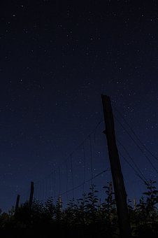 Night, Dark, Stars, Astrophotography, Photography