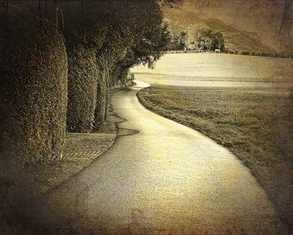 Field, Road, Lane, Meadow, Nature, Green