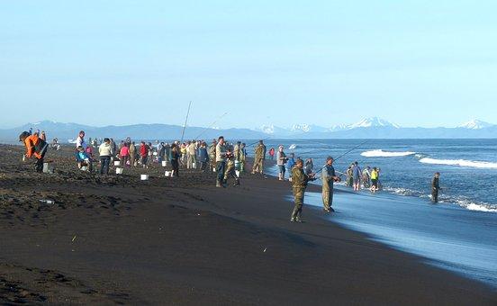 The Pacific Ocean, Wave, Surf, Foam, Sea, Seascape