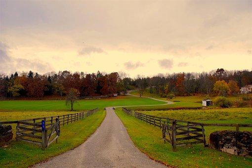 Rural, Landscape, Fence, Estate, Nature, Field, Green