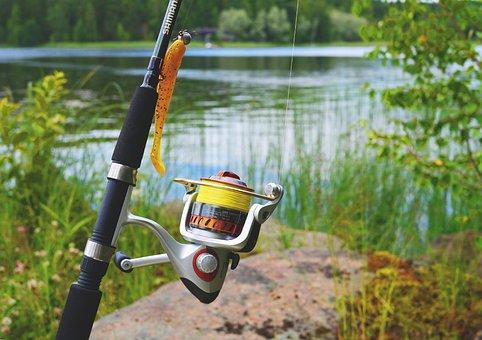 Fish, Fish Equipment, Angel, Fishing Rod, Fishing Line