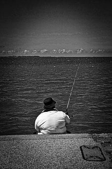 Fishing, Rod, Catch, Leisure, Fisherman, Hobby, Reel
