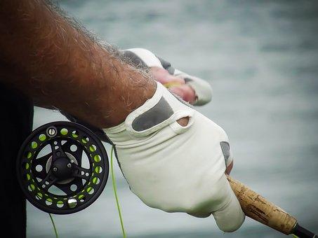 Fly-fishing, Fun, Relax, Fishing, Fisherman, Hobby