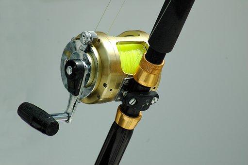 Fishing Reel, Tackle, Rod, Equipment, Fish, Sport, Line