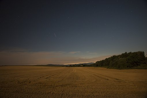 The Sky, Night, Field, Night Sky, Dark, Clouds