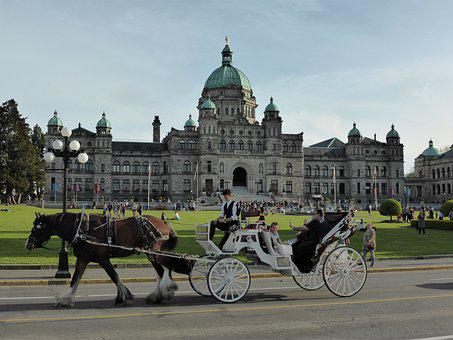 Transport, Coach, Horse And Carriage, Tour, Tourism