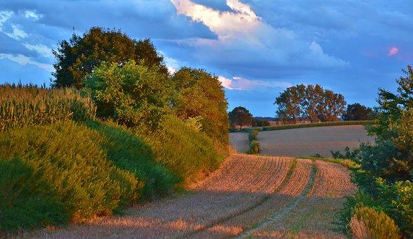 Sunset, Landscape, Evening Sky, Evening, Landscapes