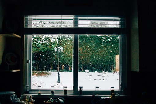 Window, Glass, Dark, Room, Outdoor, View, Trees, Plant