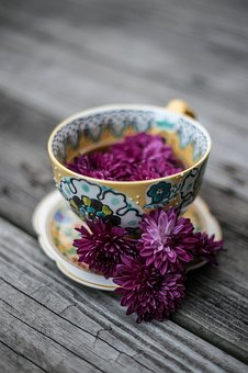 Purple, Violet, Color, Petal, Flower, Plate, Bowl