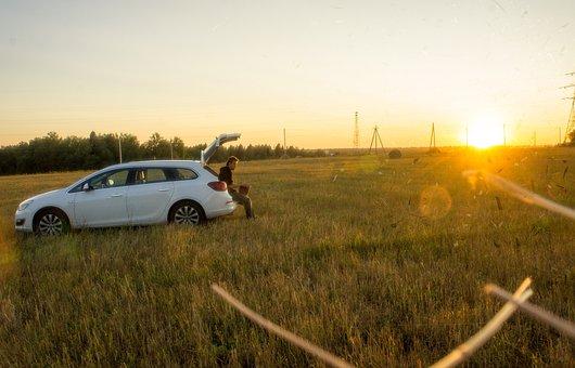 Green, Grass, Field, Horizon, Outdoor, Nature, Morning