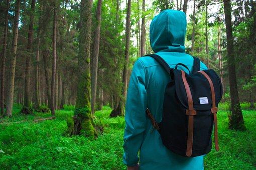 People, Man, Alone, Hiking, Outdoor, Adventure, Bag