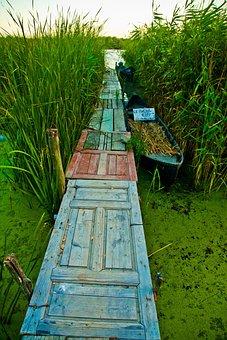 Green, Grass, Outdoor, Adventure, Wooden, Path, Door