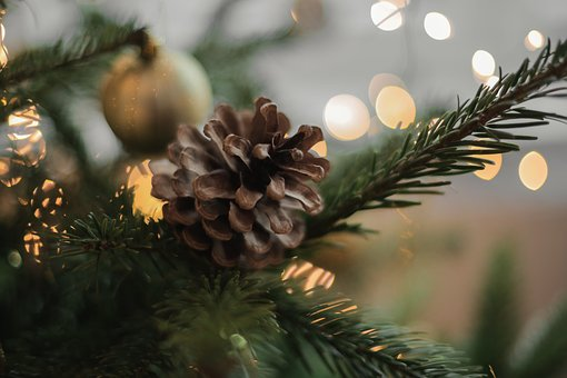 Christmas, Tree, Lights, Ball, Decor, Ornaments