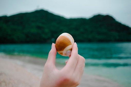 Sea, Ocean, Water, Wave, Nature, Beach, Coast, Shore