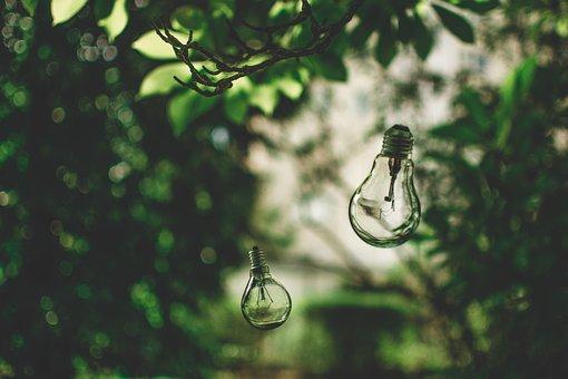 Light Bulb, Nature, Tree, Green, Environment, Ideas