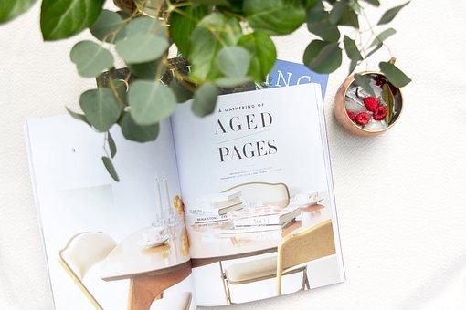 Green, Plant, White, Table, Work, Desk, Magazine, Red