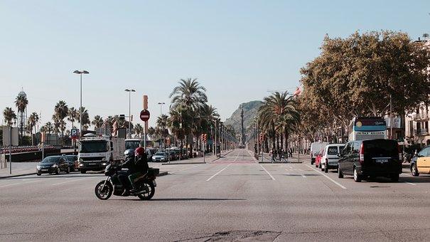 Tree, Plant, City, Motorcycle, Car, Vehicle