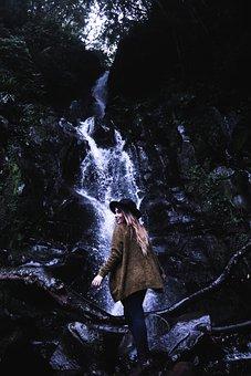 Waterfall, Green, Moss, Tree, Plant, Nature, Water