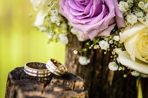 Wedding, Ring, Engagement, Couple, Pair, Blur, Wood