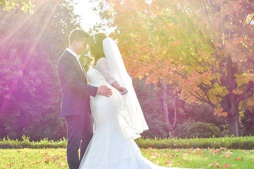 Garden, Wedding, People, Woman, Beauty, Smile, Happy