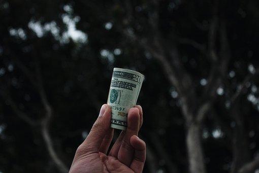 Dark, Tree, Hand, Bill, Money